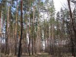 2010 Gotovimsya k lageryu 2-y pohod 024