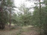 2012-04-19_10-36-1649