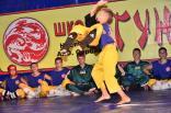 2012 tigrenok - festival vostochnyh edinoborstv v art-kveste 031