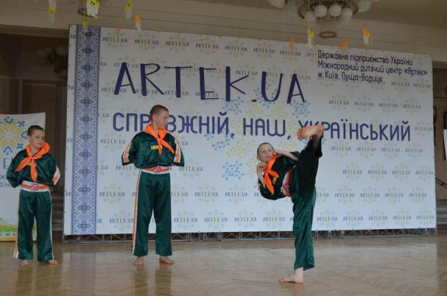 2017 apr artek.ua .serbin.gun-fu 237