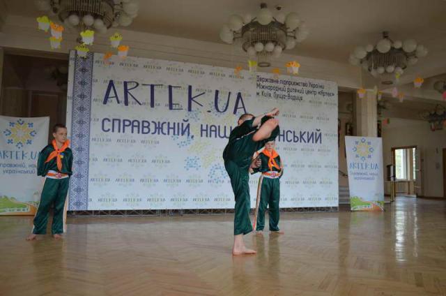 2017 apr artek.ua .serbin.gun-fu 261