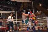 Serbin 2012 chemp. mira kikboksing 1-4 iyulya 309