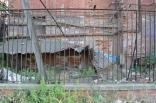 Serbin 2012 chemp. mira kikboksing greciya 034